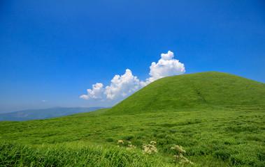 熊本市事業所グリーン宣言